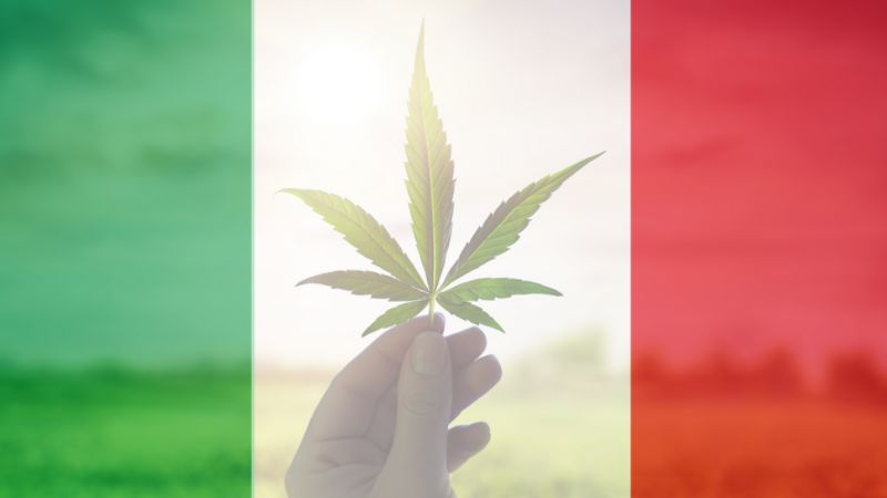 The New Craze in Italy Is a CBD Flower